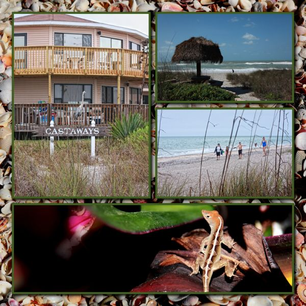 Vacation Photo Collage